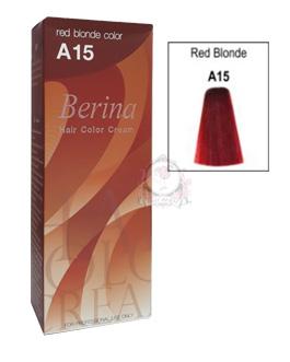 BERINA A15