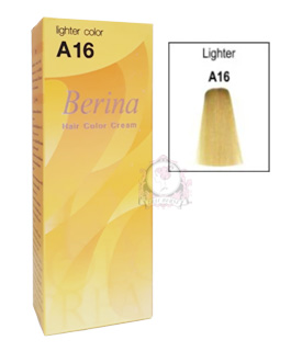 BERINA A16