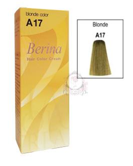 BERINA A17