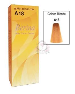 BERINA A18