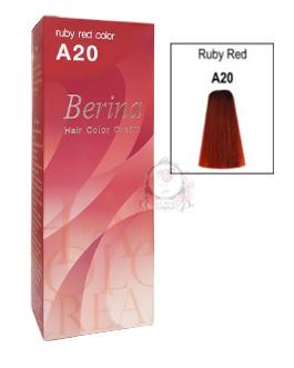 BERINA A20