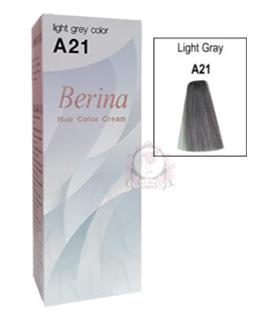 BERINA A21