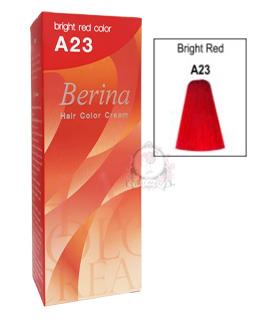 BERINA A23
