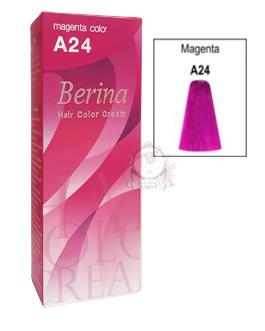 BERINA A24