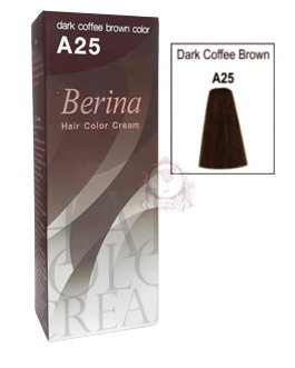 BERINA A25