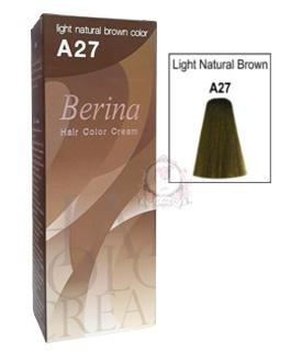 BERINA A27