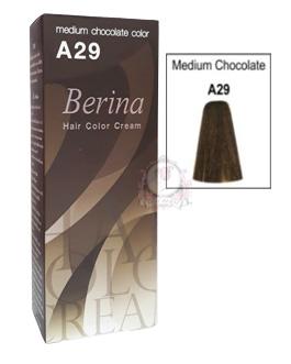 BERINA A29