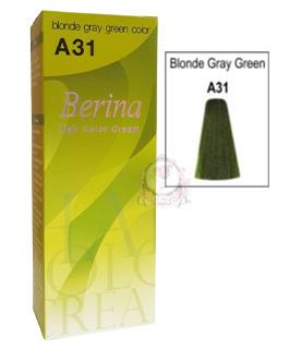 BERINA A31