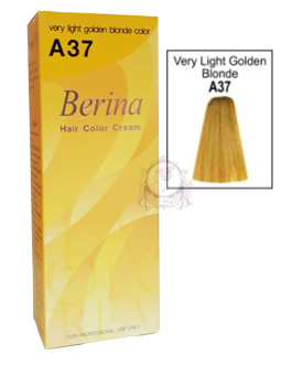 BERINA A37